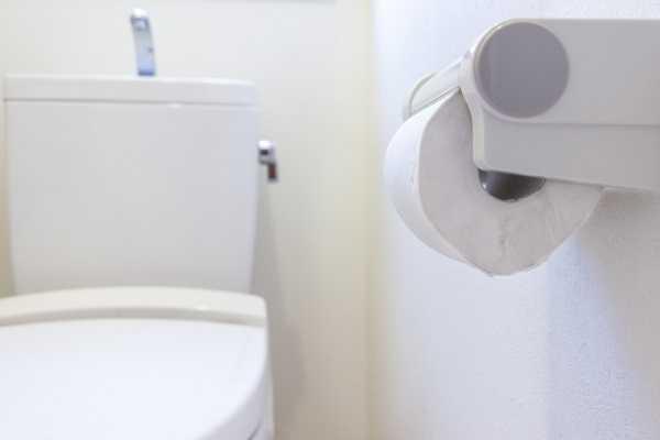 許多民眾使用後,馬桶都傳出災情。(示意圖/翻攝自photoAC)