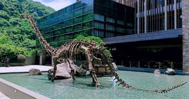 【好玩情報】不能出國!改到大板根走走 板根巨獸 遠古生物展開展